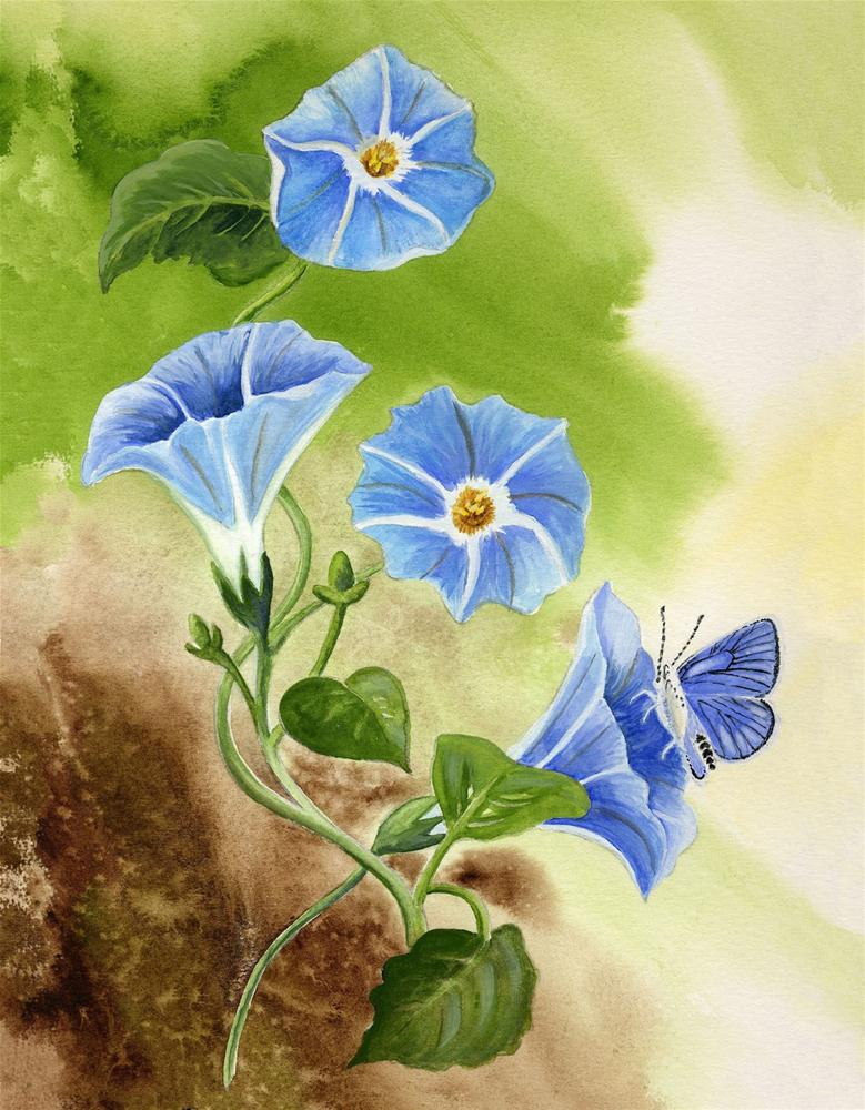 """""""Morning Glory with Blue Copper Butterfly"""" original fine art by Michelle Wolfe"""