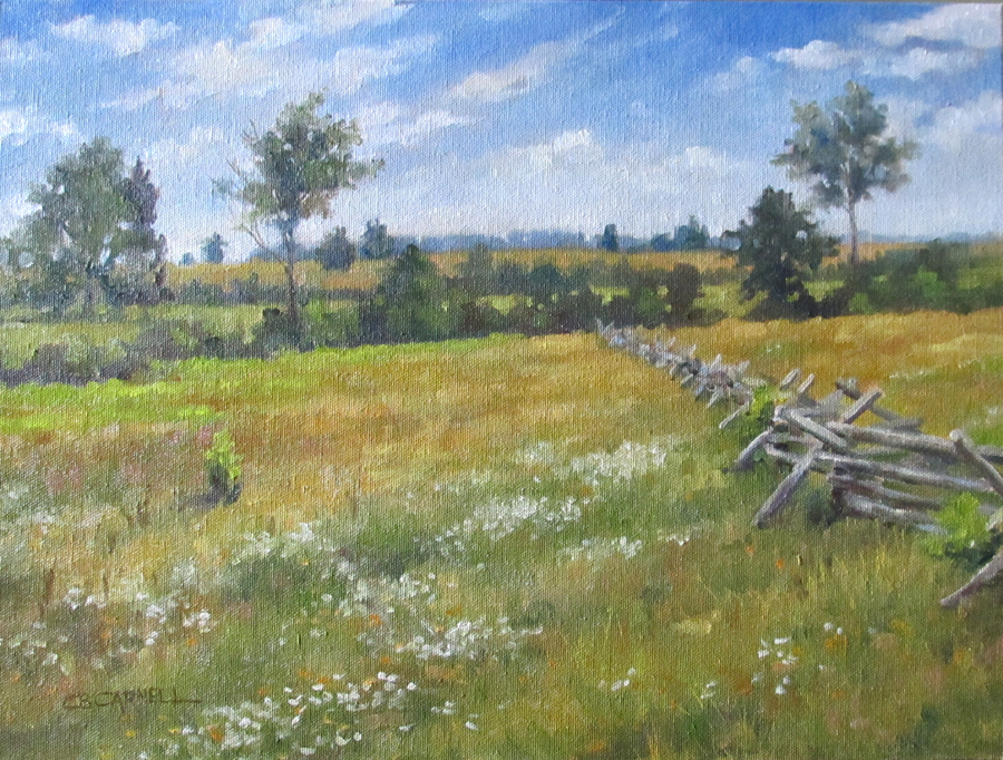 """Fields of Tranquility"" original fine art by Claire Beadon Carnell"