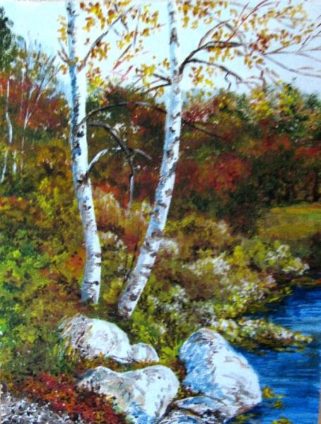 """Birch at Waters Edge"" original fine art by Nan Johnson"