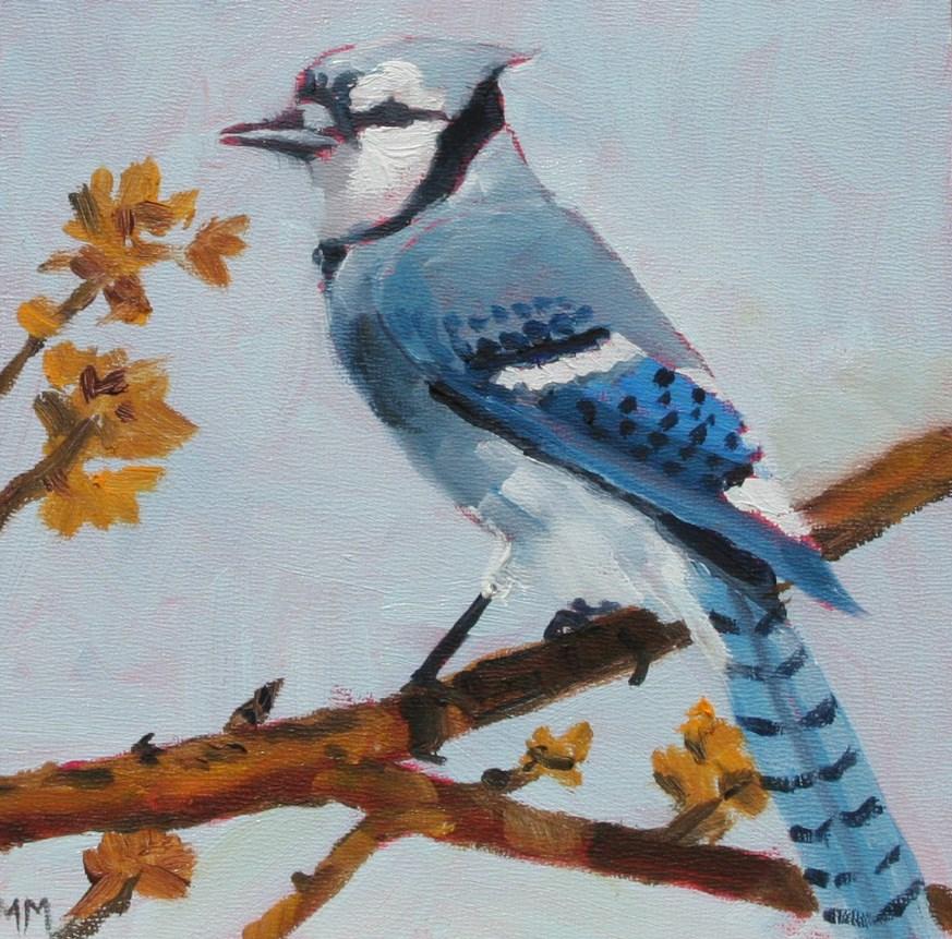 """Blue Jay"" original fine art by Maria McNitt"