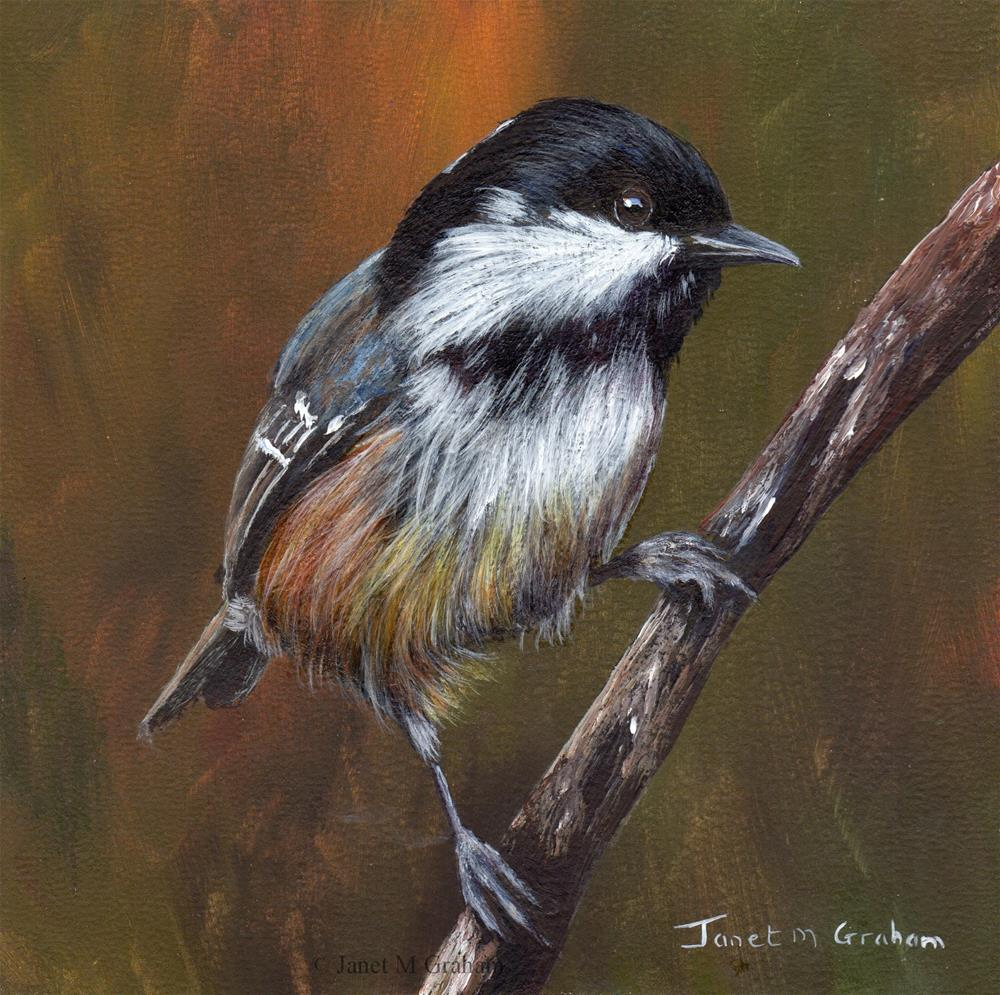"""Coal Tit No 2"" original fine art by Janet Graham"