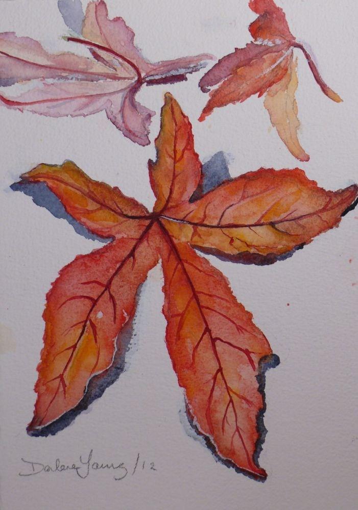 """573 Japanese Maple Leaf Study"" original fine art by Darlene Young"