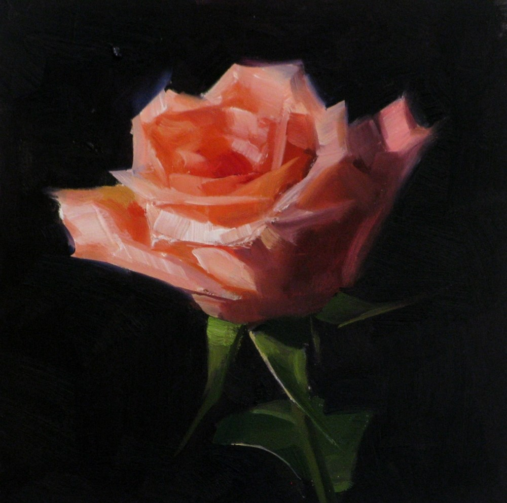"""Pink Rose Study 4"" original fine art by Qiang Huang"