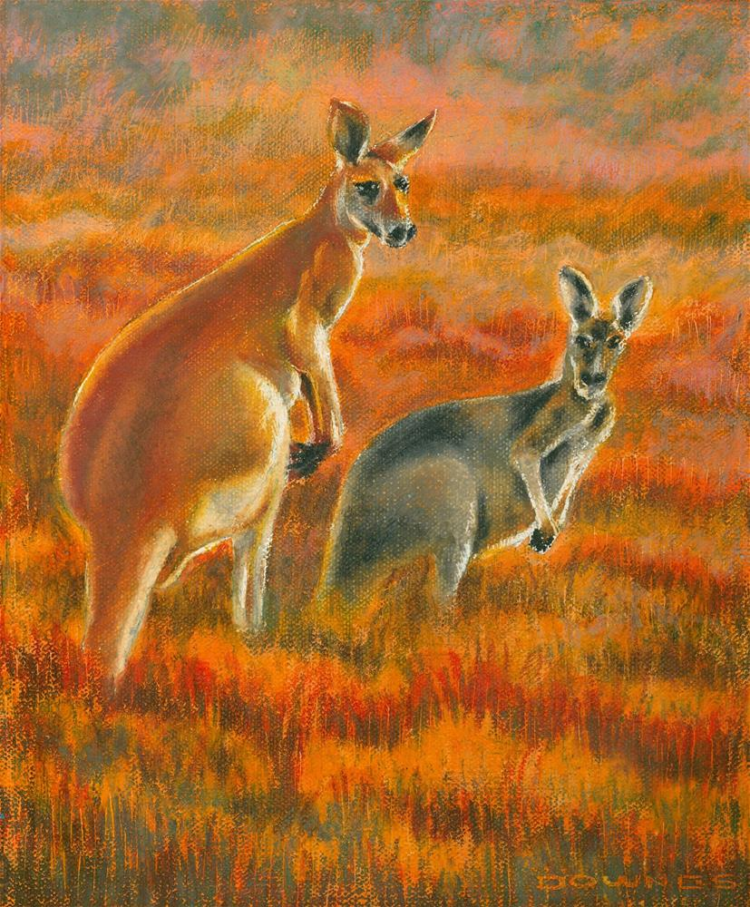 """340 KANGAROOS"" original fine art by Trevor Downes"