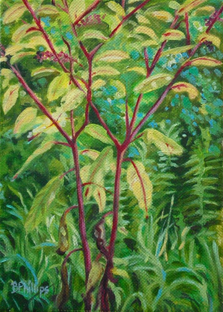 """Poke weed"" original fine art by Beverley Phillips"