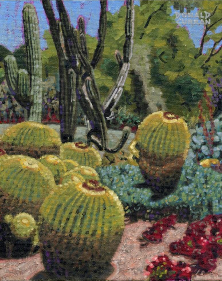 """Cactus"" original fine art by Donald Curran"