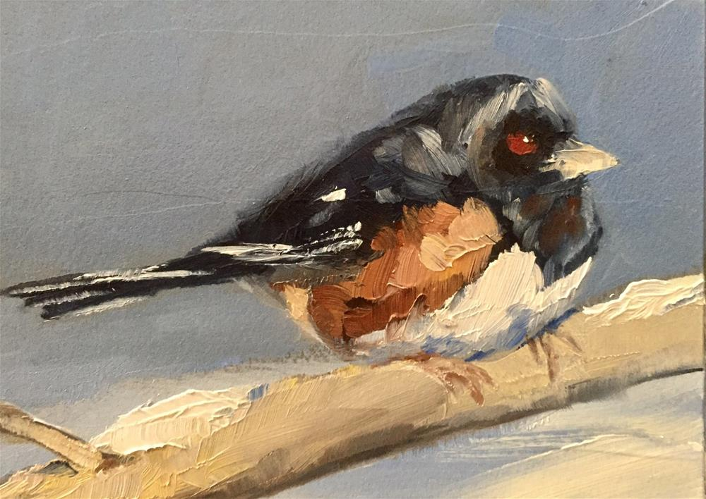 """Eastern Towhee"" original fine art by Gary Bruton"