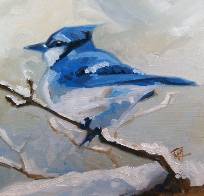 """No 387 Winter Blue Jay"" original fine art by Robin J Mitchell"