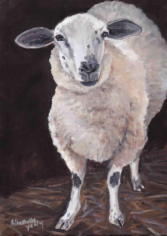 """Full Body Sheep"" original fine art by Charlotte Yealey"