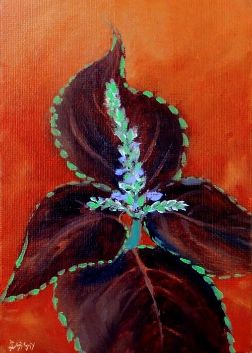 """Coleus In Bloom"" original fine art by Dalan Wells"