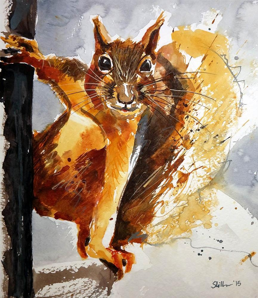 """1232 Squirel"" original fine art by Dietmar Stiller"