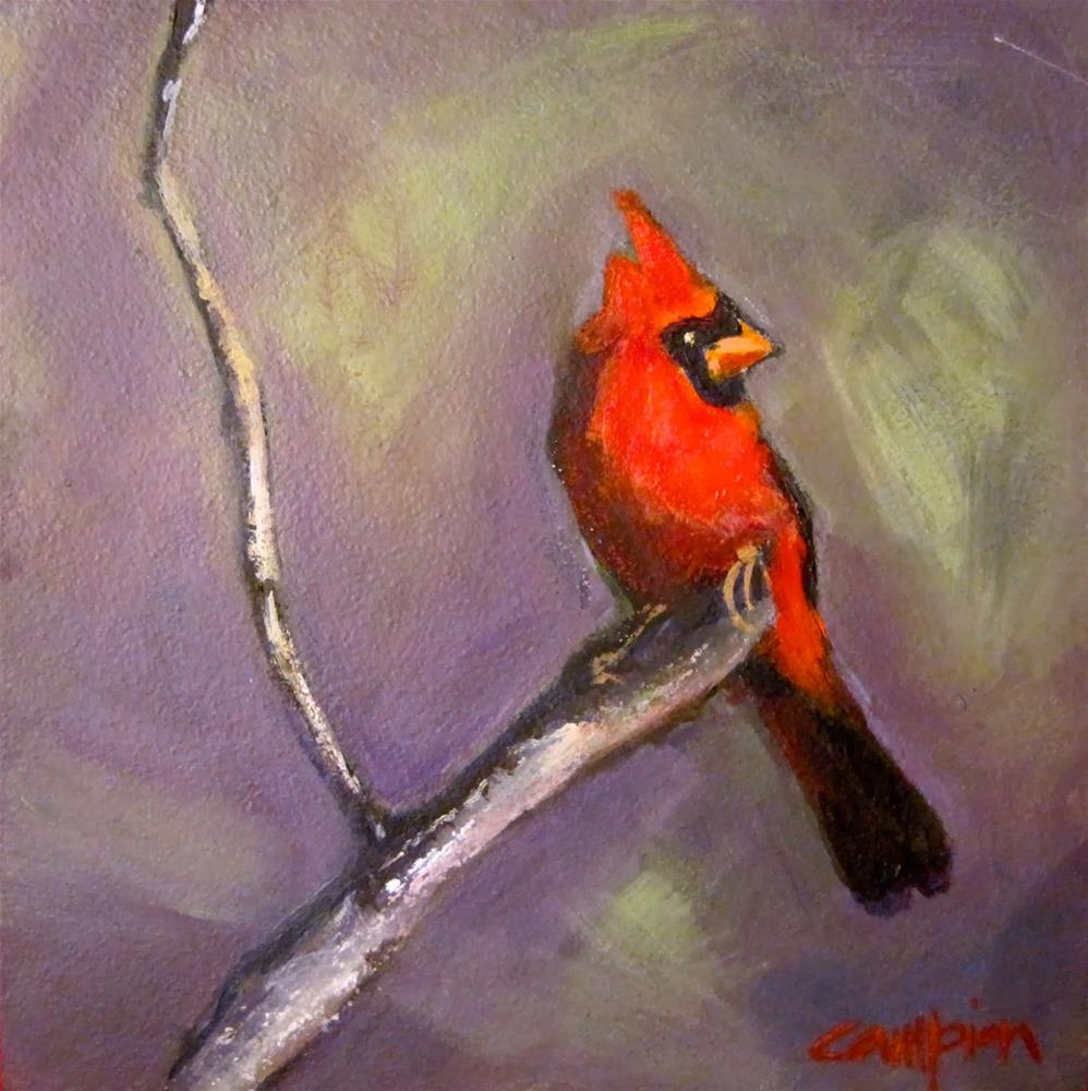 """239 Cardinal"" original fine art by Diane Campion"
