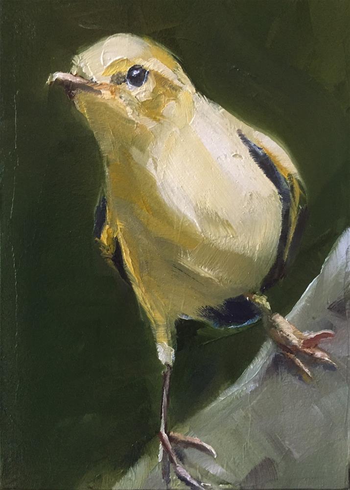 """Willow Warbler"" original fine art by Gary Bruton"