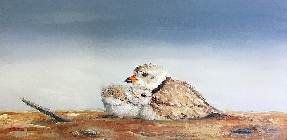 """""""Nestled In (Piping Plovers)"""" original fine art by Sunny Avocado"""
