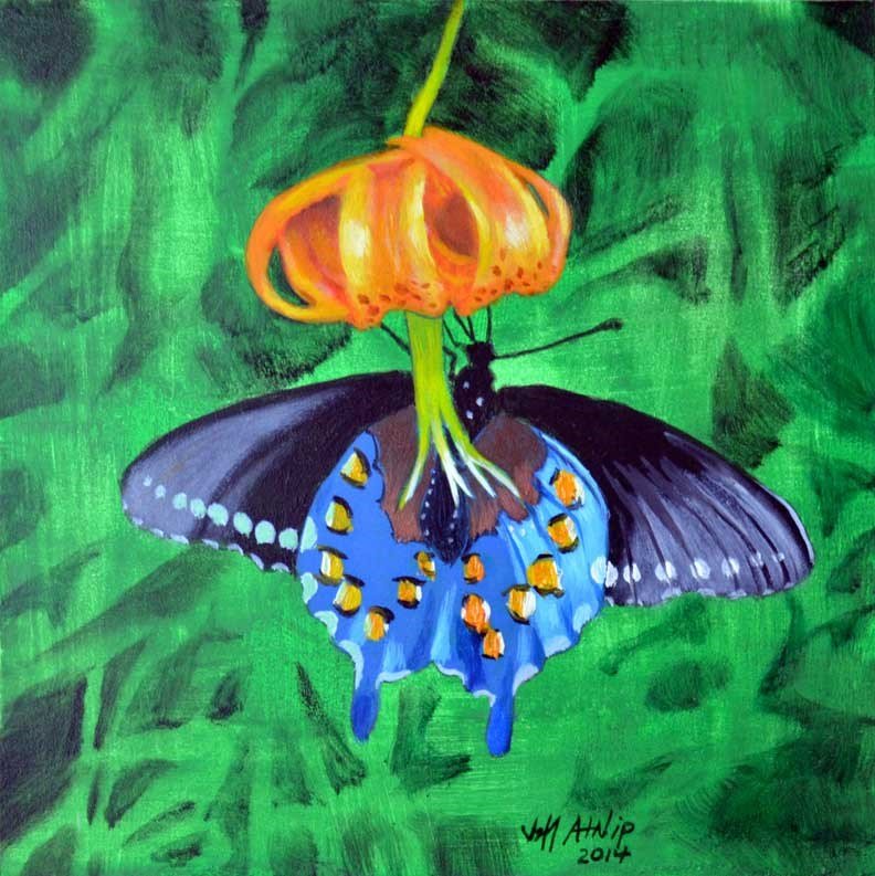 """Spice Bush Swallowtail"" original fine art by Jeff Atnip"