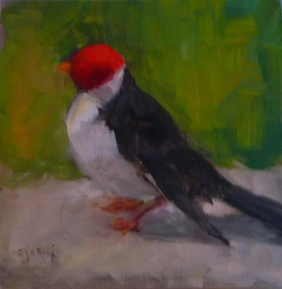 """Hawaiian Bird"" original fine art by Carol Josefiak"