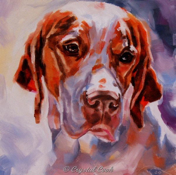 """""""Cold Nose, Warm Heart"""" original fine art by Crystal Cook"""