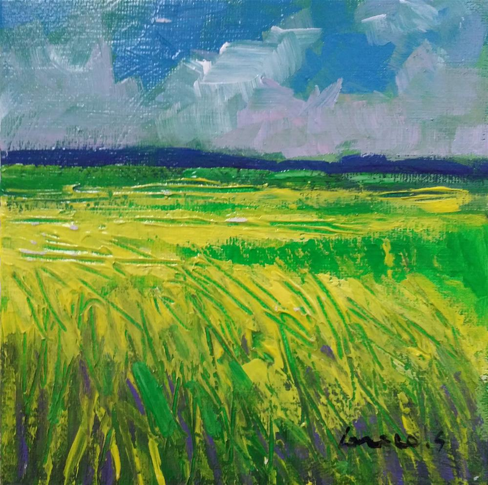 """rapeseed field"" original fine art by salvatore greco"