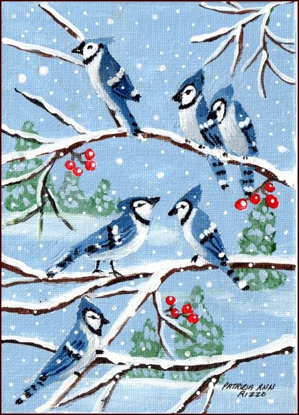 """""""A Half Dozen Bluejays"""" original fine art by Patricia Ann Rizzo"""