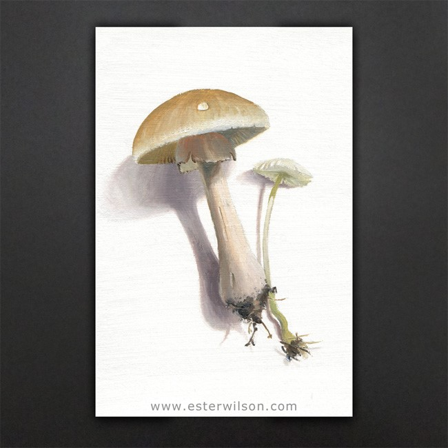 """Mushroom Forest"" original fine art by Ester Wilson"