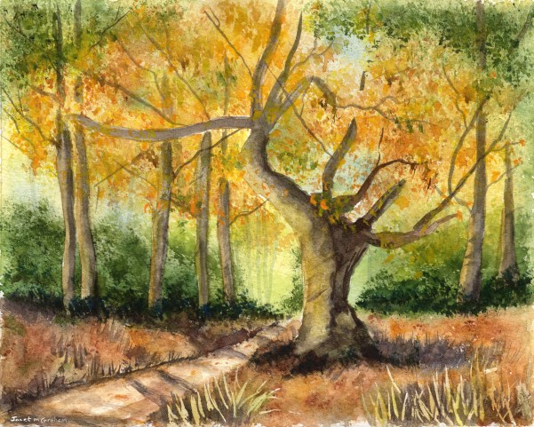 """""""Autumn Begins"""" original fine art by Janet Graham"""
