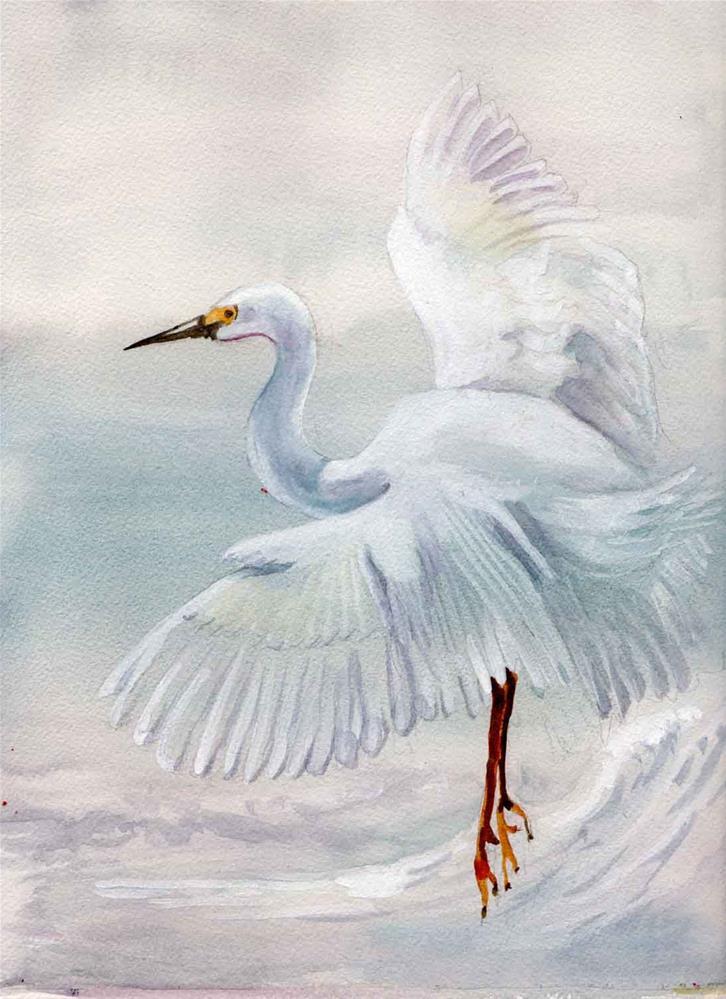 """""""Egret """" original fine art by Bunny Griffeth"""