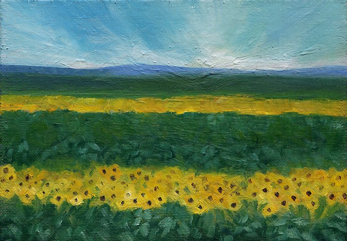 """Sunflower Fields"" original fine art by J M Needham"