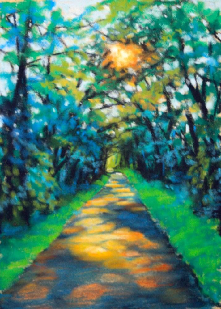 """""""Sunlight & Shadow"""" original fine art by Jill Bates"""