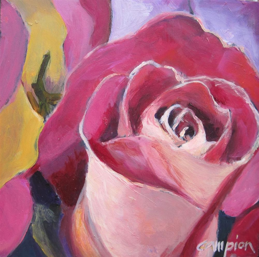 """136 Pink Rose"" original fine art by Diane Campion"