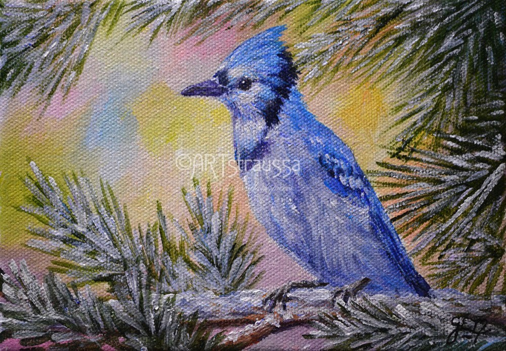 """Blue Jay On A Fine Winter Day"" original fine art by Gloria Ester"