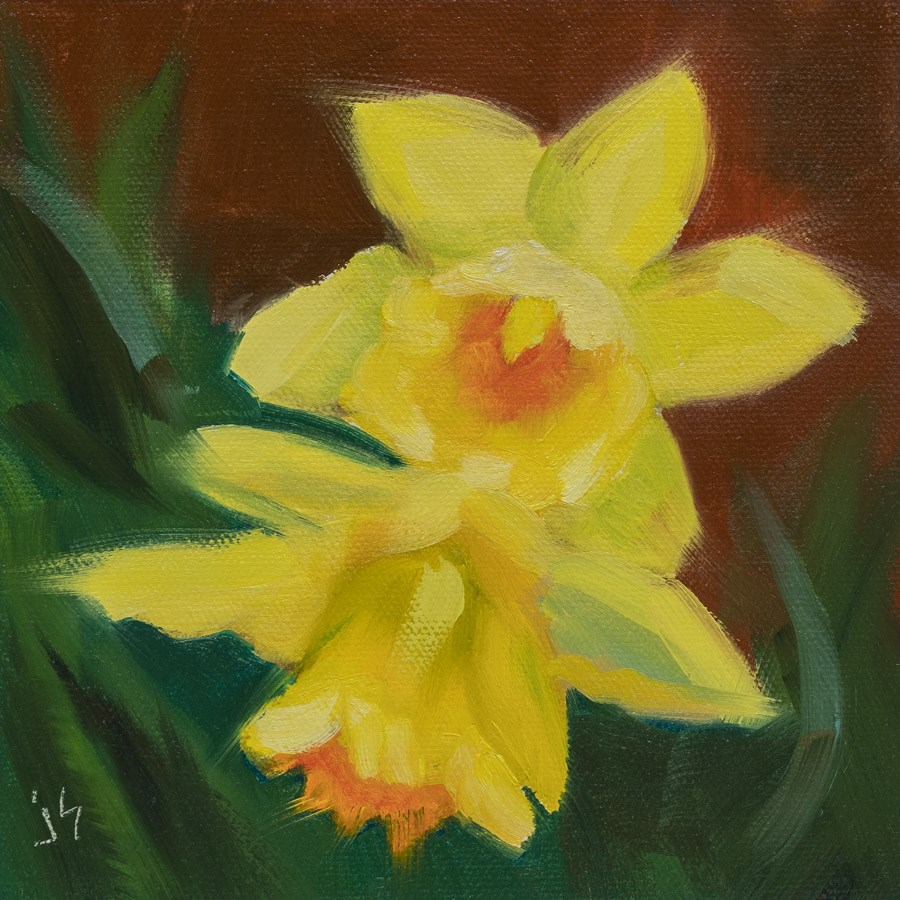 """Yellow Surprise -  Daffodils"" original fine art by Johnna Schelling"