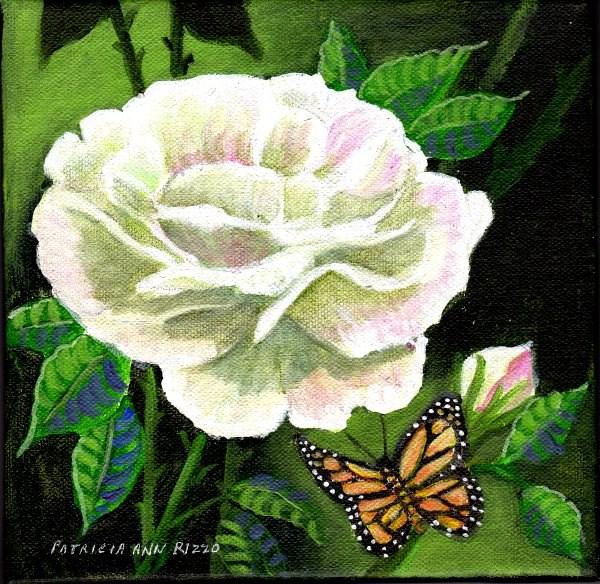 """""""Rose and Monarch"""" original fine art by Patricia Ann Rizzo"""