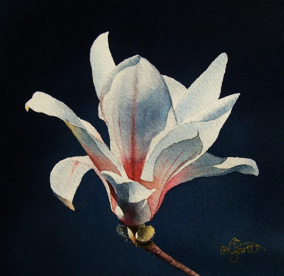 """Magnolia 1"" original fine art by Jacqueline Gnott, TWSA, WHS"