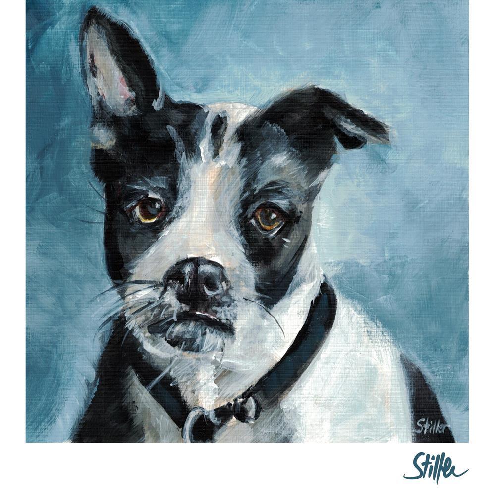 """""""3526 Doggone"""" original fine art by Dietmar Stiller"""