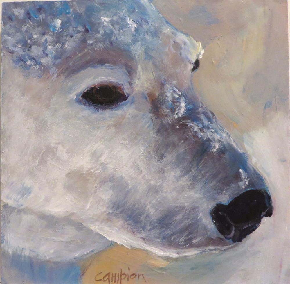 """526 Contemplation"" original fine art by Diane Campion"