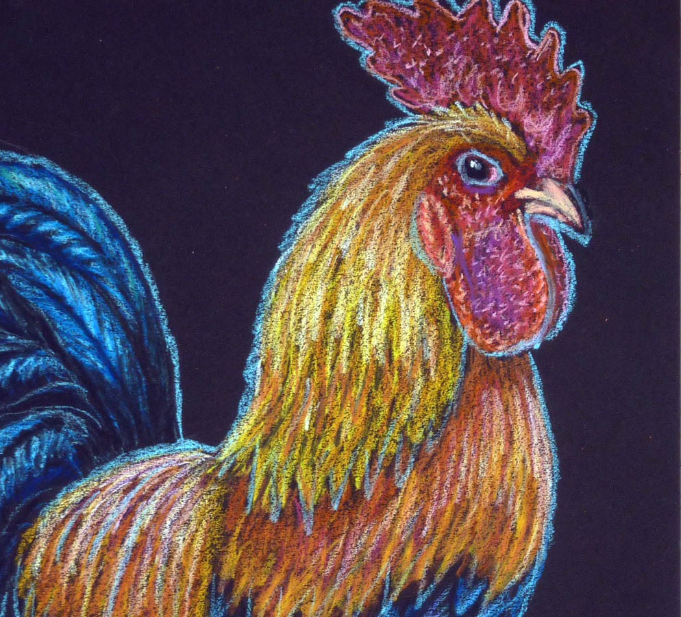 """""""Shelley's Rooster"""" original fine art by Ande Hall"""