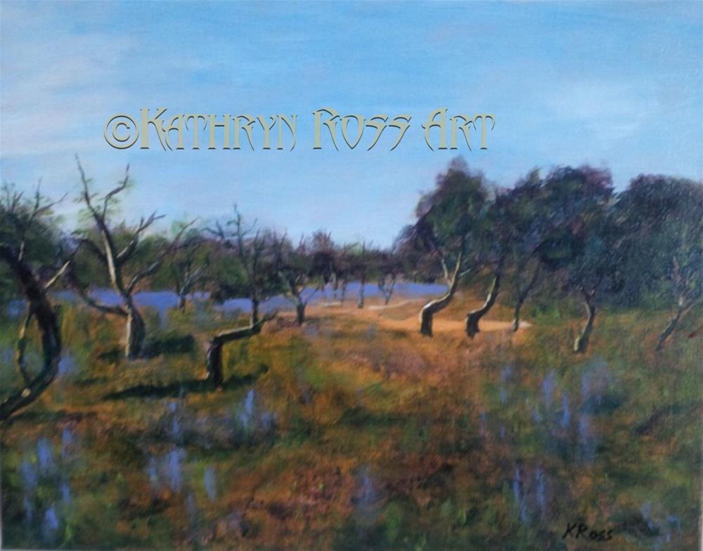 """""""Portugal fields"""" original fine art by Kathryn Ross"""