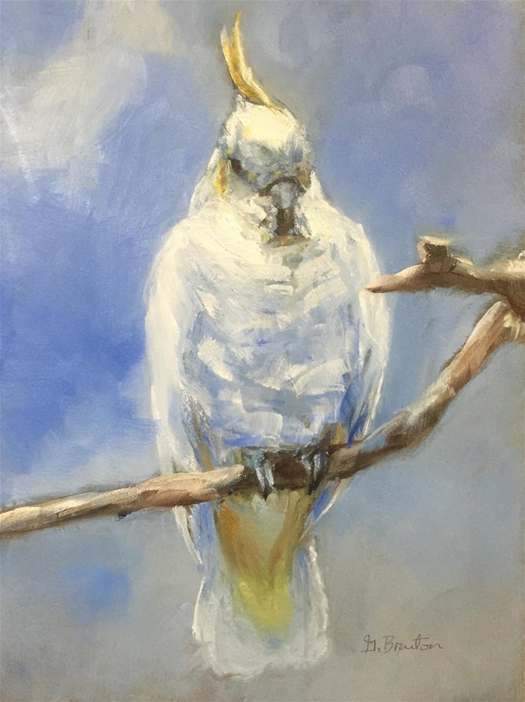 """Cockatoo Portrait"" original fine art by Gary Bruton"