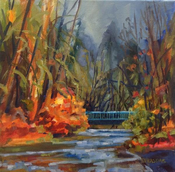 """Morning Walk"" original fine art by Marcela Strasdas"