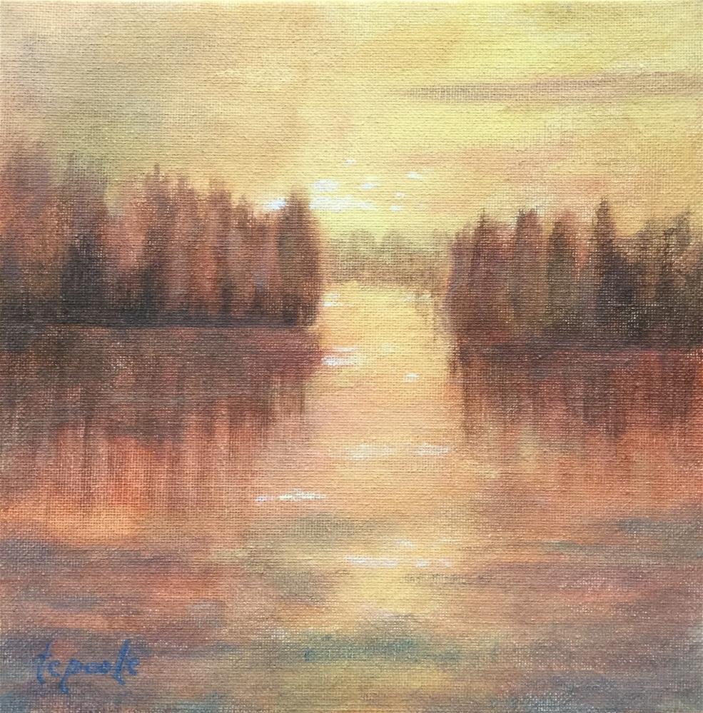 """""""Contemplations Light"""" original fine art by T.C. Poole"""