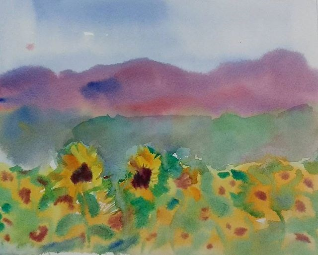"""Sunflower Fields, Blue Ridge"" original fine art by Maria Peagler"