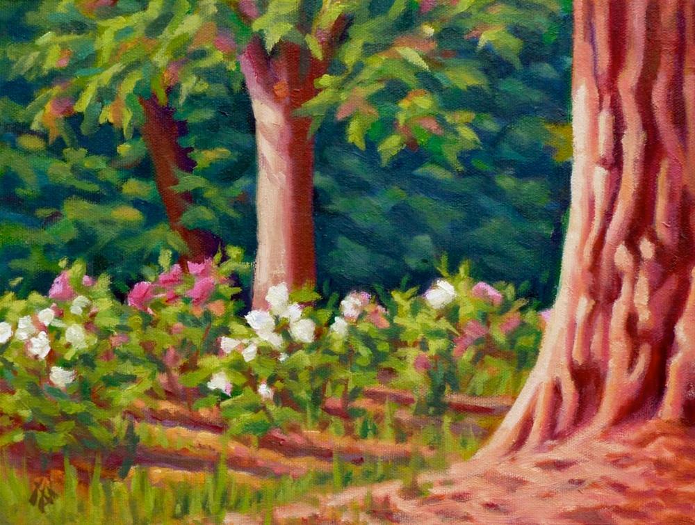 """Redwood and Roses"" original fine art by Mark Allison"