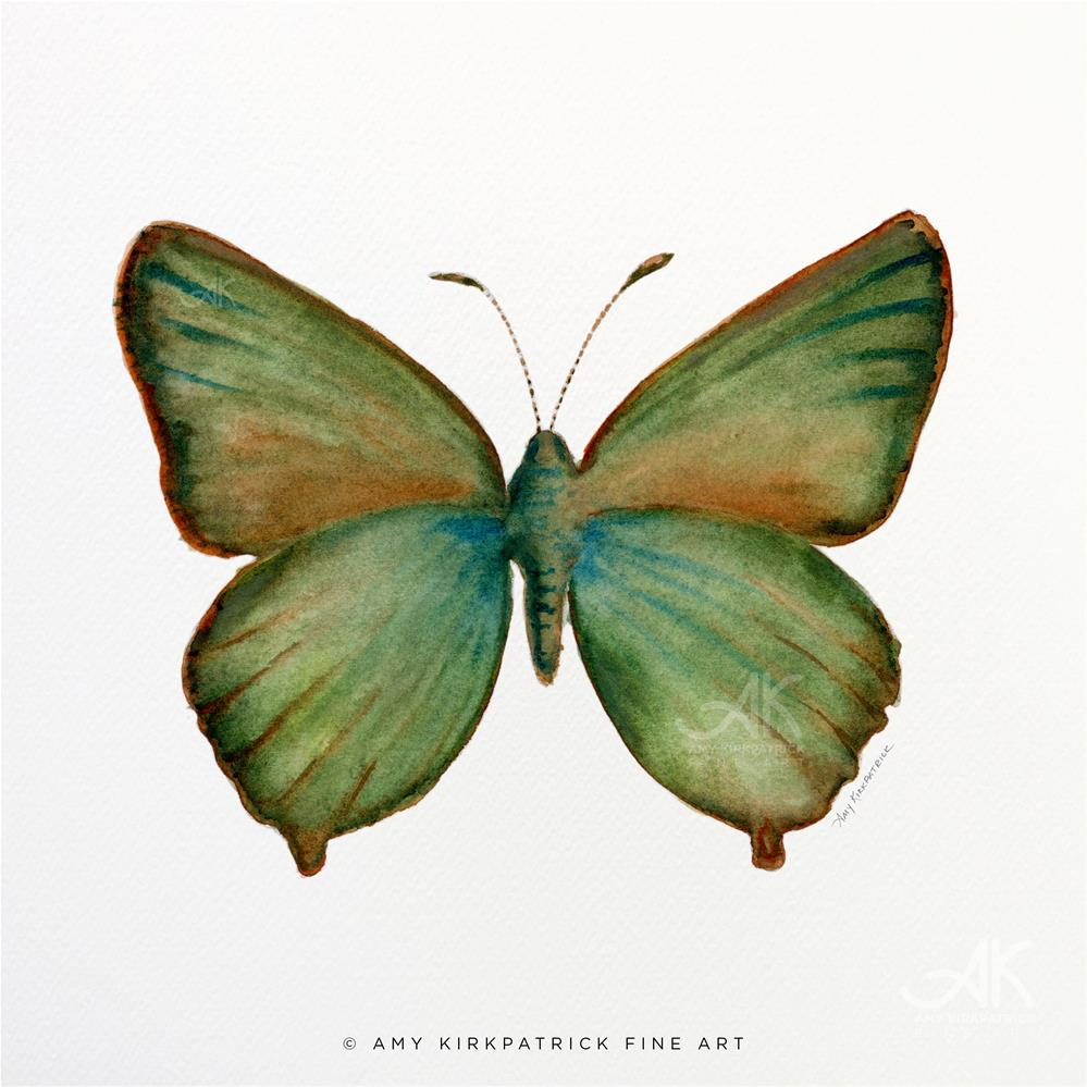 """#17 Green Hairstreak Butterfly #0326"" original fine art by Amy Kirkpatrick"