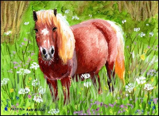 """Pony in the Meadow"" original fine art by Patricia Ann Rizzo"