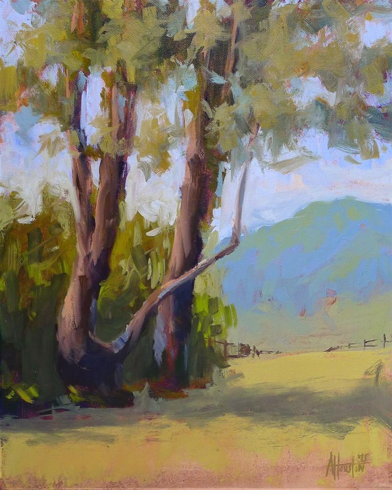 """""""Brasstown Valley Trees II"""" original fine art by Adam Houston"""