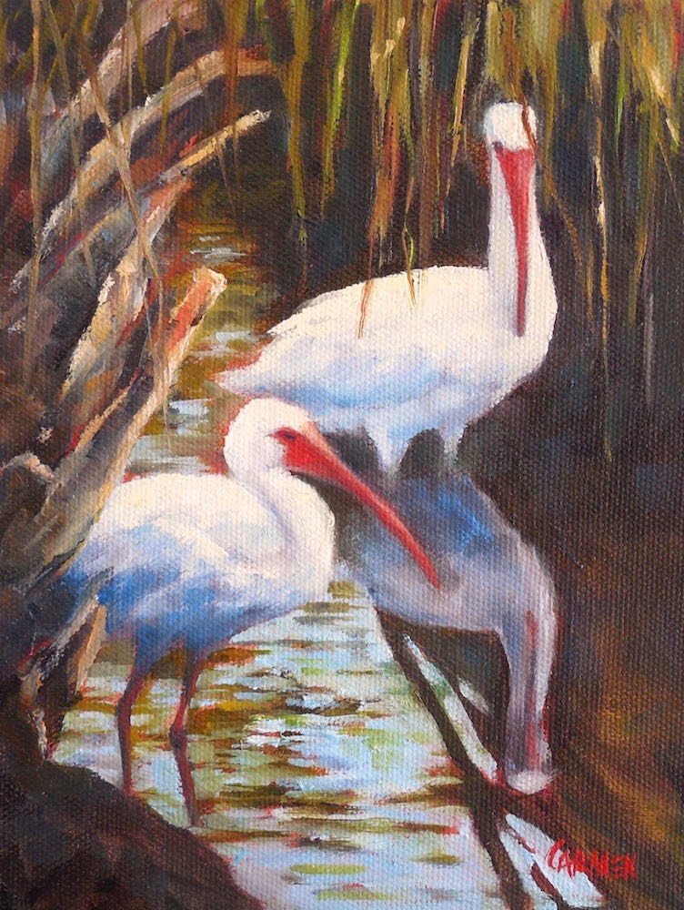 """Ibis, 6x8 Oil on Canvas Panel, Wildlife Art, Daily Painting"" original fine art by Carmen Beecher"