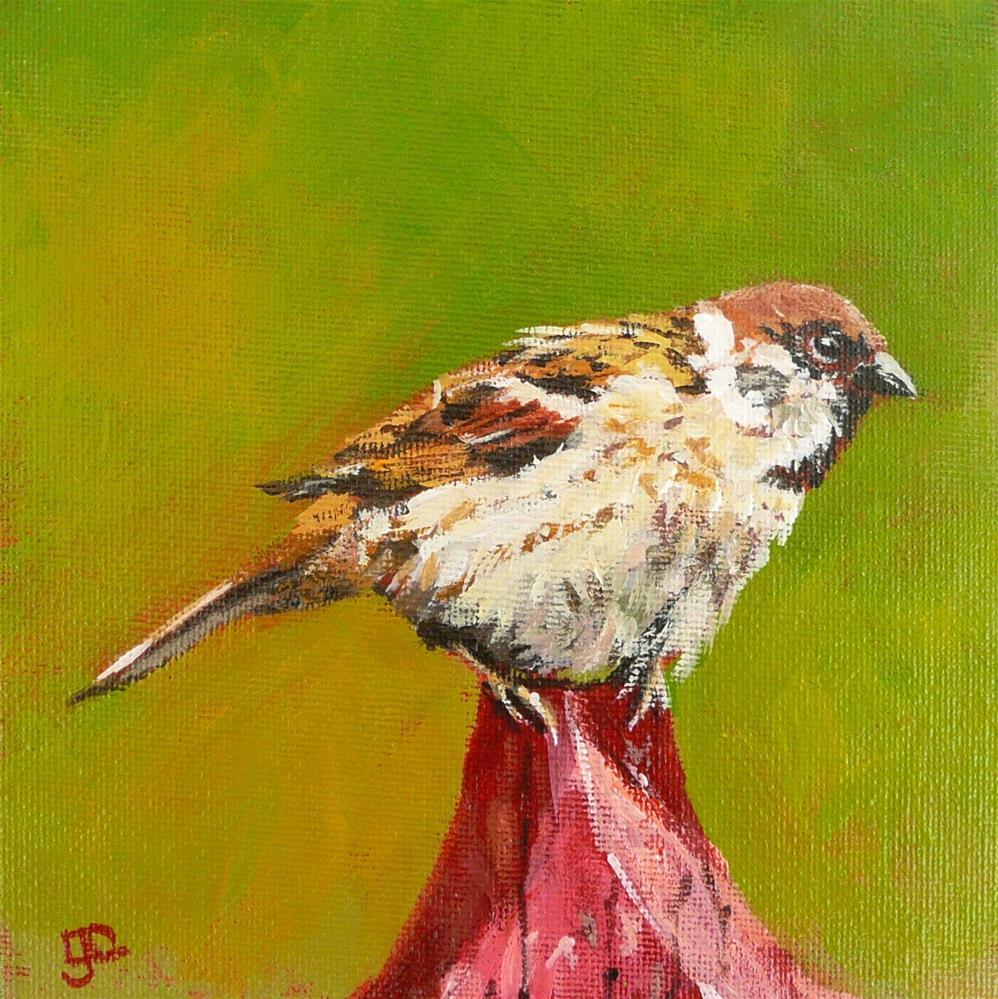 """Perched Atop A Picket"" original fine art by Leanne Owen"