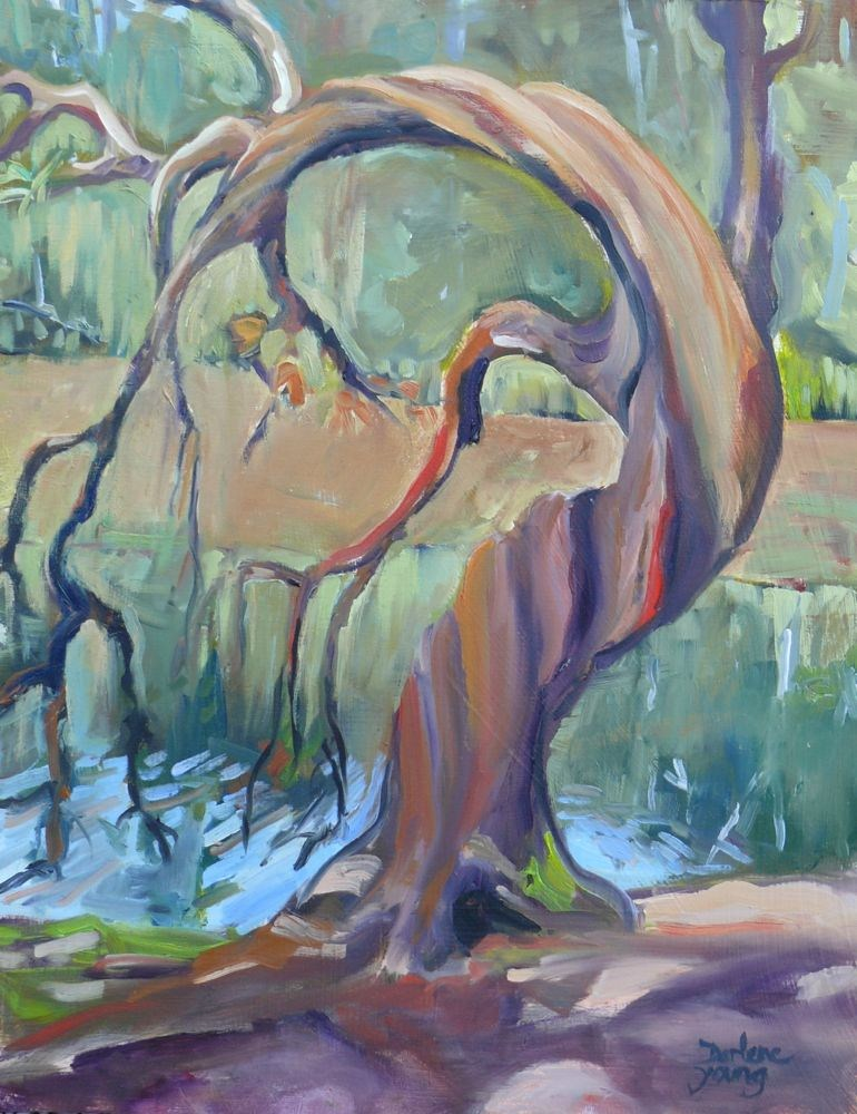 """Arbutus Tree, oil on luan, 11x14"" original fine art by Darlene Young"