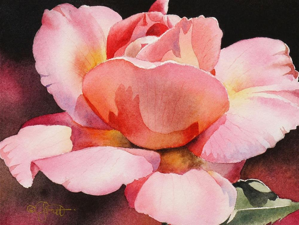 """""""Pink Rose, New Watercolor & New Beginner Video on the Forum"""" original fine art by Jacqueline Gnott, TWSA, WHS"""