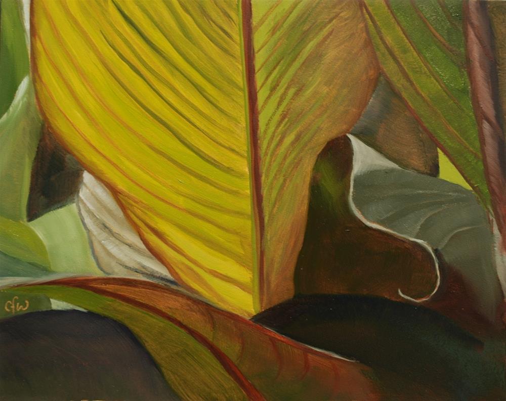 """Canna Lily"" original fine art by Gary Westlake"